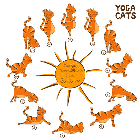 Isolated cartoon funny red cat doing yoga position of Surya Namaskara