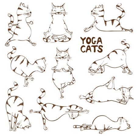 Set van geïsoleerde grappige sketch cats iconen doet yoga-positie