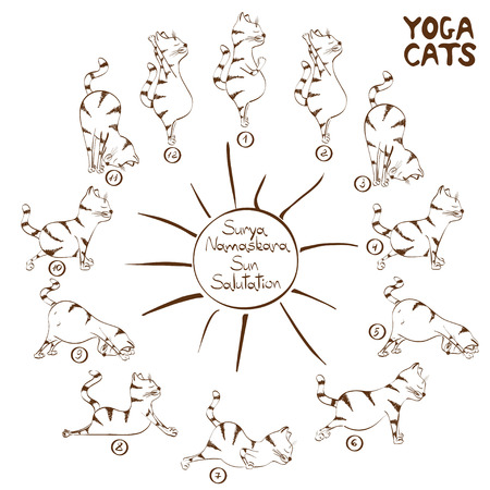 Isolated funny sketch cat doing yoga position of Surya Namaskara Stock Illustratie