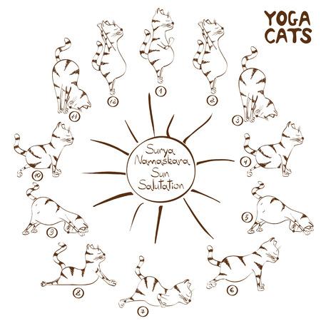 Isolated funny sketch cat doing yoga position of Surya Namaskara Illustration