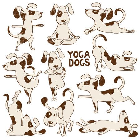 Set van geïsoleerde cartoon grappige honden iconen doet yoga-positie.
