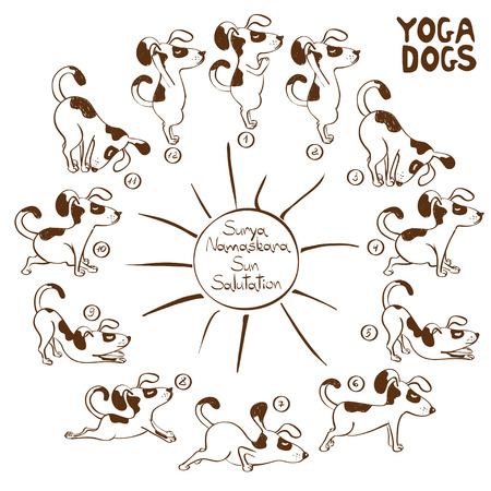 animals outline: Isolated cartoon funny dog doing yoga position of Surya Namaskara. Illustration
