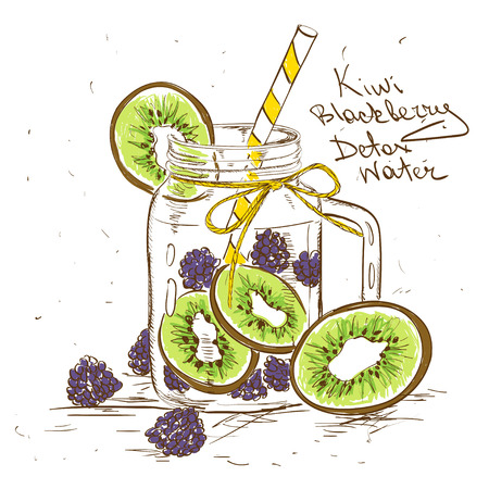 Hand drawn sketch illustration with Kiwi Blackberry detox water. Healthy lifestyle concept. Vectores