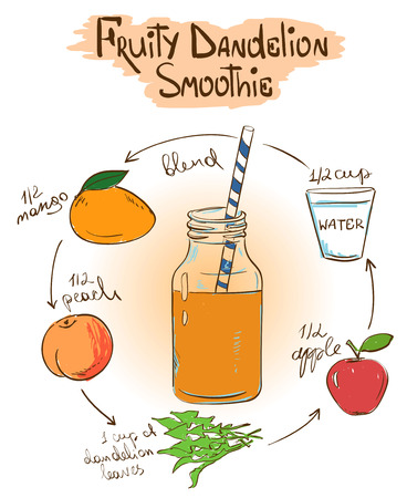 fruity: Hand drawn sketch illustration with Fruity Dandelion smoothie. Including recipe and ingredients for restaurant or cafe. Healthy lifestyle concept.