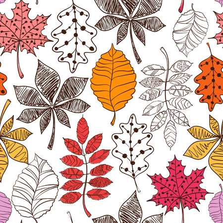 autumn leaves background: Seamless pattern of colorful patterned autumn leaves on a white background.