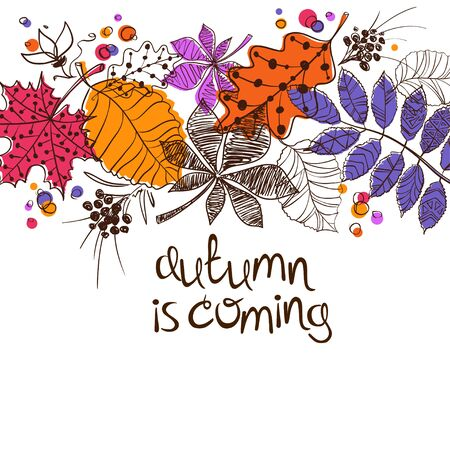 orange trees: Colorful patterned autumn leaves on a white background. Creative autumn concept. Illustration