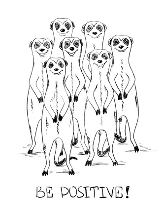 mongoose: Graphic sketch illustration with funny smiling group of meerkats and text be positive.