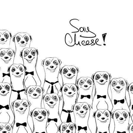 Black and white sketch illustration of funny smiling meerkats. Meerkats posing on camera.