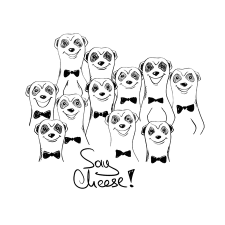 Black and white sketch illustration with group of funny smiling meerkats. Meerkats posing on camera.