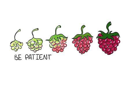 ripening: Illustration of raspberry ripening. Creative concept of development with text - be patient.
