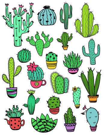 Set of isolated colorful cactus and succulent icons. Houseplant and wild cactus collection.