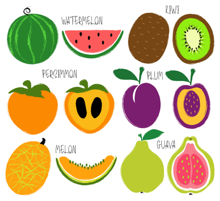 Colorful brush grunge fruits icons set: watermelon, persimmon, kiwi, guava, plum and melon.