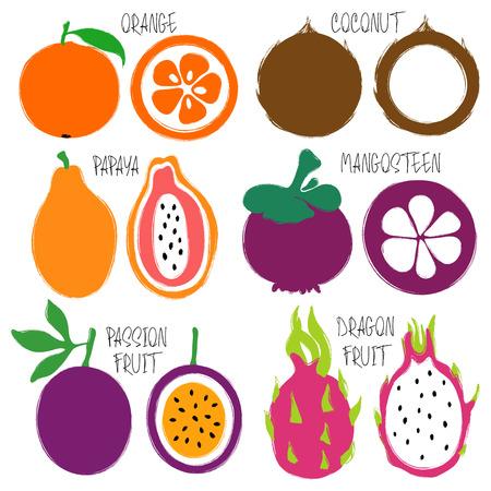 Kleurrijke borstel grunge vruchten geplaatste pictogrammen: sinaasappel, kokosnoot, papaja, mangostan, passievrucht en draakfruit.
