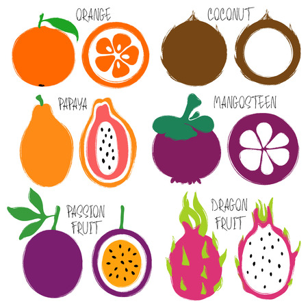 Colorful brush grunge fruits icons set: orange, coconut, papaya, mangosteen, passion fruit and dragon fruit. Illustration