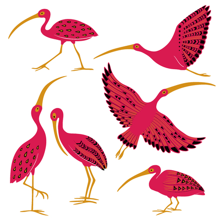 Wild set of cute ibis. Isolated cartoon pink ibis birds icons with folk art pattern.