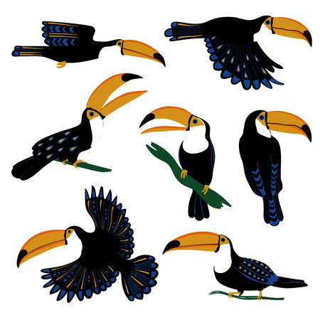Wild set of colorful tropical birds. Isolated funny toucan icons with folk art pattern.