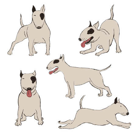 Collection of isolated Bull Terrier dog icons. Funny cartoon dog character set.