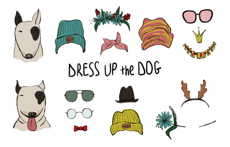 Drees up the dog collection. Funny hipster Bull Dog couple portraits with accessories.