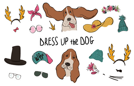 Drees up the dog collection. Funny hipster Basset Hound couple portraits with accessories.
