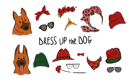 Drees up the dog collection. Funny hipster Shepherd couple portraits with accessories.