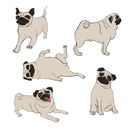 Collection of isolated Pug dog icons. Funny cartoon dog character set.