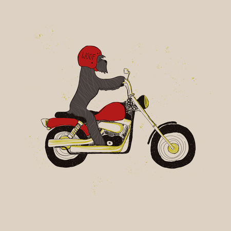 Illustration with cute Schnauzer Dog riding motorcycle. Funny greeting card, t-shirt design, print, sticker or poster.