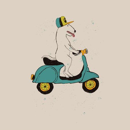 Illustration mit niedlichem Bullterrier-Hund, der Motorrad reitet. Lustige Grußkarte, T-Shirt-Design, Druck, Aufkleber oder Poster.