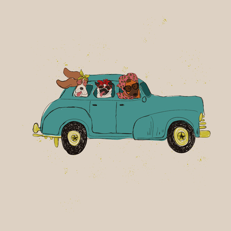 Illustration with cute dogs driving car. Funny greeting card, t-shirt design, print, sticker or poster.