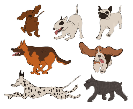Collection of isolated running and playing dog icons. Dalmatian Dog, Basset Hound, Pug, Miniature Schnauzer, Bull Terrier, Dachshund, Shepherd. Funny cartoon dog character set. Illustration