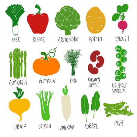 Funny collection of flat colorful vegetables and herbs. Isolated vector icons. Vectores