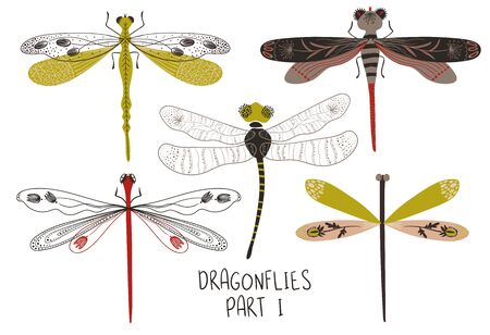 Folk art collection of ornate insects. Set of isolated colorful dragonflies with patterned decorated wings. Part I.