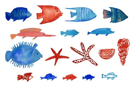 Sea collection with watercolor painted fish, seashell and starfish. Isolated icons of undersea life. Standard-Bild