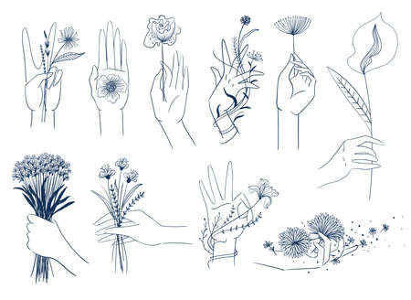 Set of isolated elegant female hands with flowers. Line art botanical collection. Hands holding bouquets.