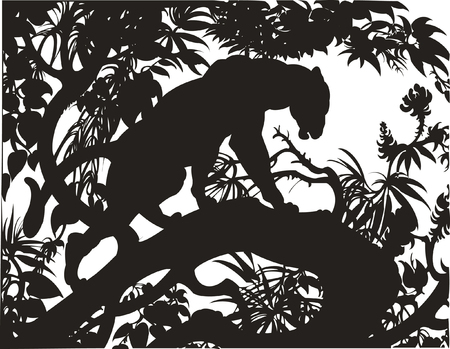 Silhouette of a panther standing on a tree branch   Vector