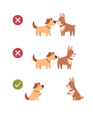 Dogs also keep a social distance. Animals observe safety precautions, do not contact each other on a walk, greet each other at a distance. Distance poster, Vector illustration in cartoon style.