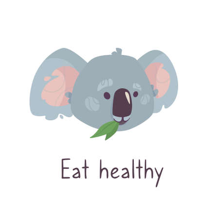 gray koala chews foliage and the inscription Healthy nutrition. Funny australian animal in cartoon style. Isolated on a white background. Funny illustration for banners, posters, cards