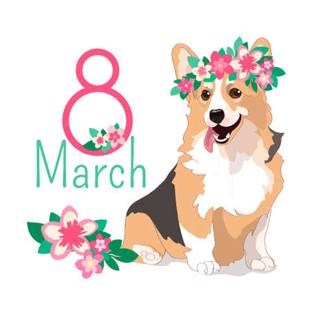 Funny holiday card with welsh corgi in a wreath of flowers. Contented dog with protruding pink tongue. The inscription from March 8. Vector greeting card for womens day isolated on a white background