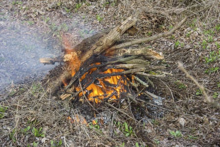 whiff: burning in the fire chopped wood and branches Stock Photo