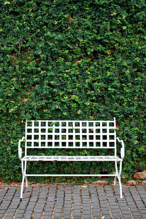 Bench in the Garden, it s lonely