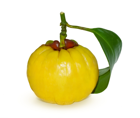 Garcinia atroviridis fruit isolated on white