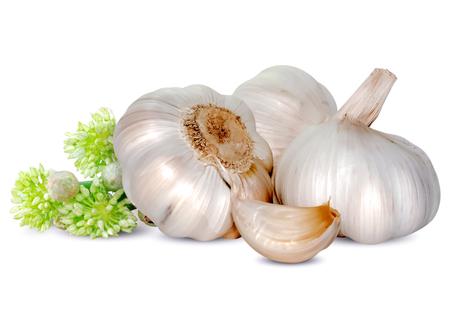 Świeży czosnek na białym tle Zdjęcie Seryjne