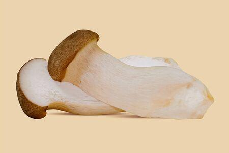 King oyster mushroom (Pleurotus eryngii) on white