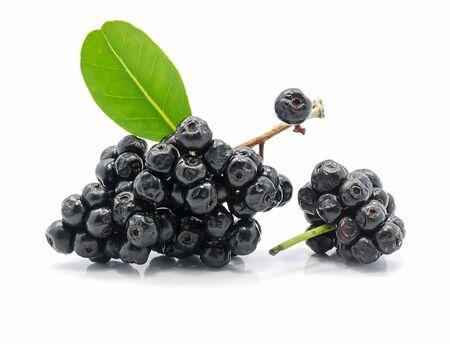 Jambolan plum isolated on white background