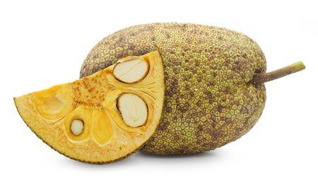 Fresh Jackfruit isolated on white background