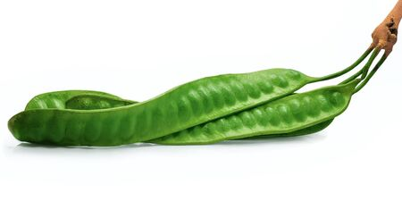 Bitter bean isolated on white background Stockfoto