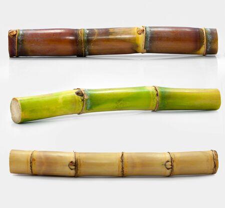 Sugar cane isolated on white background Stockfoto