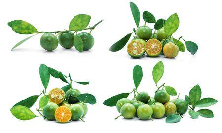 Kumquat Fruit or orange fruit isolated on white background