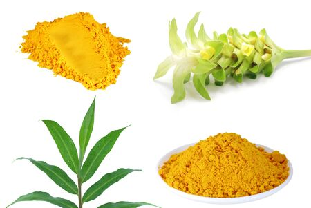 Turmeric powder with leaf and flower isolated on white