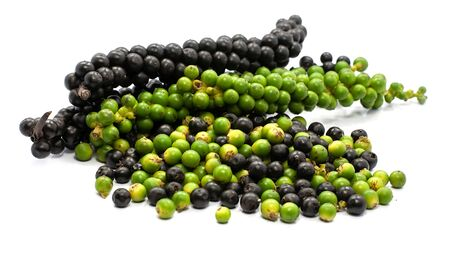 Fresh Green and black peppercorn isolated on white background