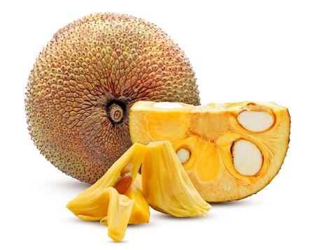 Single object of Jackfruit isolated on white background